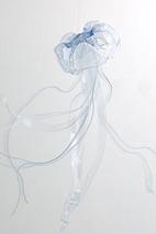 pet_dansani-b.jpg